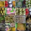 Snack / Kue Basah