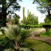 Jasa Taman dan Rumput